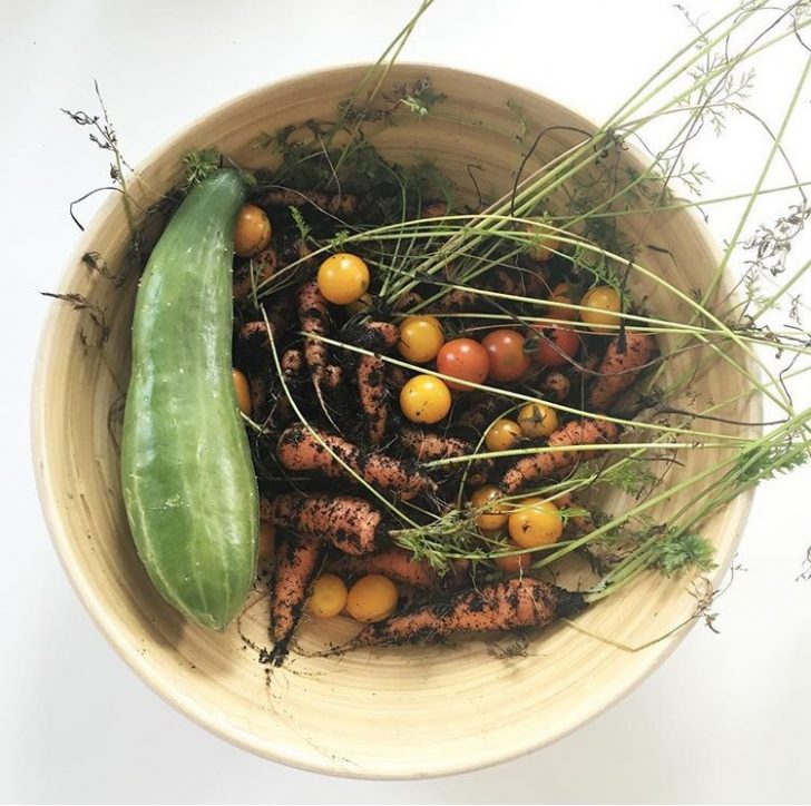 Frühjahrsputz: Der Gemüsegarten